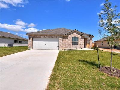 Kyle Single Family Home For Sale: 148 Red Sun Dr