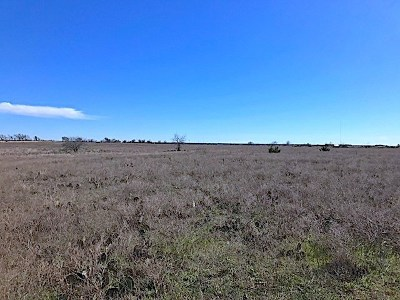 Bertram TX Residential Lots & Land For Sale: $39,900