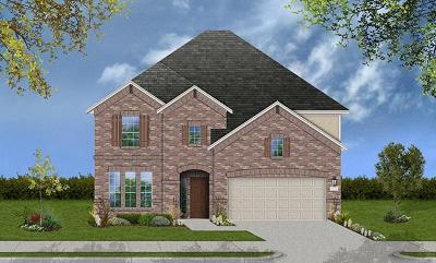 Round Rock Single Family Home For Sale: 3320 Hidalgo Loop