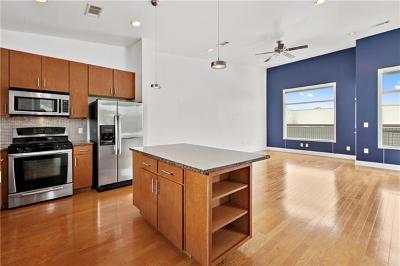 Austin Rental For Rent: 1702 S Lamar Blvd #18