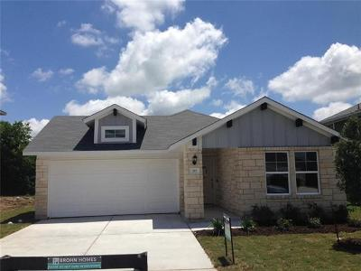 Bastrop County Single Family Home For Sale: 315 Schuylerville Drive