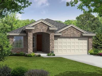 Kyle Single Family Home For Sale: 221 Evening Dusk Dr