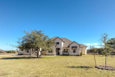 Leander Single Family Home For Sale: 3408 Branch Hollow Dr