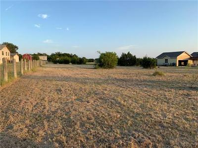Liberty Hill Residential Lots & Land For Sale: 405 Summerwood Dr