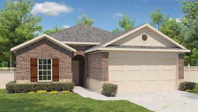 Kyle Single Family Home For Sale: 216 Hess Dr