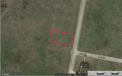 Bastrop Residential Lots & Land For Sale: 114 Sandpiper Dr
