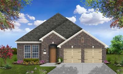 Round Rock Single Family Home For Sale: 300 W Doucet Cv