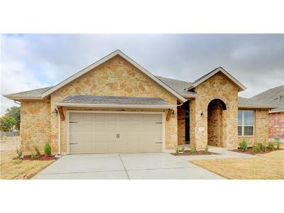 Leander Single Family Home For Sale: 104 Ran Road