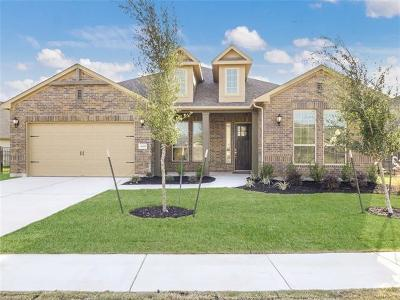 Round Rock Single Family Home For Sale: 3245 Veneto Way