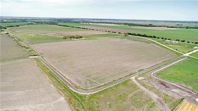 Granger TX Farm For Sale: $390,000