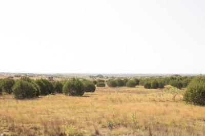 Lampasas Farm For Sale: TBD County Road 1255