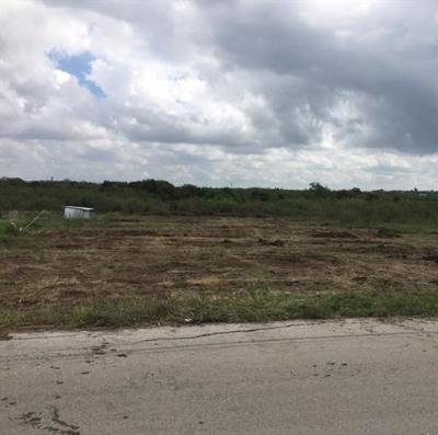 Lockhart TX Residential Lots & Land For Sale: $99,999