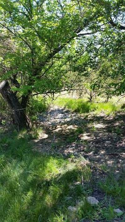 Lampasas Residential Lots & Land For Sale: Tract C County Road 3421