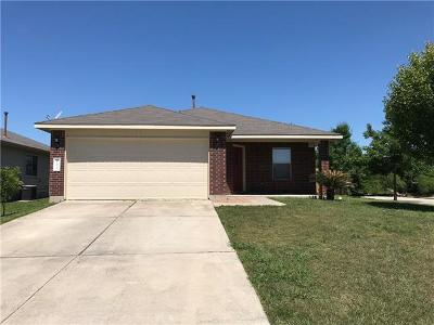 Kyle Single Family Home Coming Soon: 260 Onyx Lake Dr