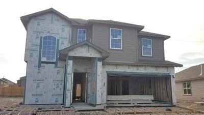 San Marcos Single Family Home For Sale: 117 Finn