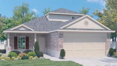 Austin Single Family Home For Sale: 10813 Seguin St