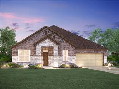 Leander Single Family Home For Sale: 2405 Carretera Dr