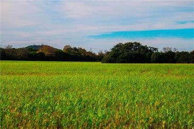 Kempner Farm For Sale: Tract 13 Fm 2808
