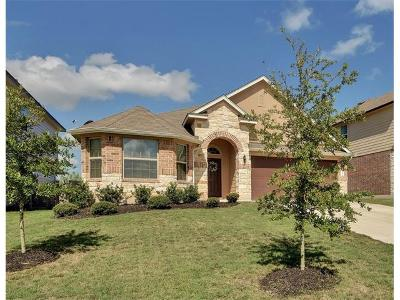 Kyle Single Family Home For Sale: 380 Timbleweed Dr