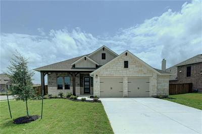 Liberty Hill Single Family Home For Sale: 422 Pendent Dr