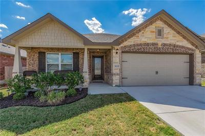 Single Family Home For Sale: 8030 Arezzo Dr