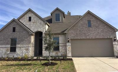 Pflugerville Single Family Home For Sale: 19321 Tristan Stone Dr