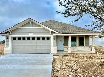 Burnet County Single Family Home For Sale: 448 Dove Trl