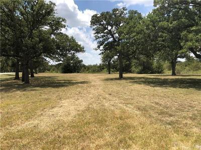 Lockhart Residential Lots & Land For Sale: 6380 E Fm 20
