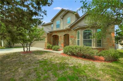 Dripping Springs Single Family Home For Sale: 17803 Linkhill Dr