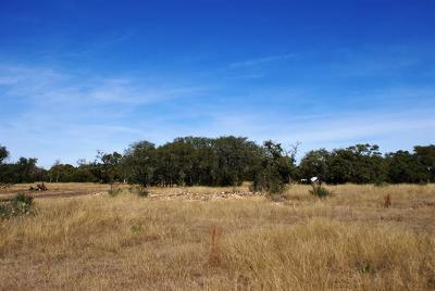 Dripping Springs Residential Lots & Land For Sale: Redemption Ave Lot 32