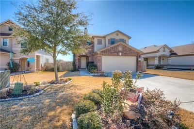 Kyle Single Family Home For Sale: 358 Tower Dr