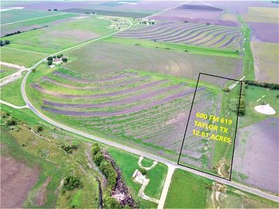 Williamson County Residential Lots & Land For Sale: 600 Fm 619