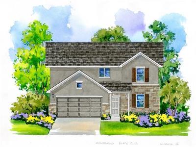 San Marcos Single Family Home For Sale: 220 Braeden Brooke Dr