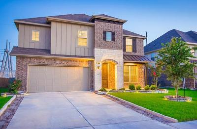 Hutto Single Family Home For Sale: 913 Emory Stable Dr