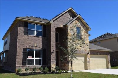 Pflugerville Single Family Home For Sale: 4100 Godwit Dr