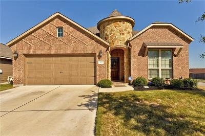 Hutto Single Family Home For Sale: 100 Everglades Cv