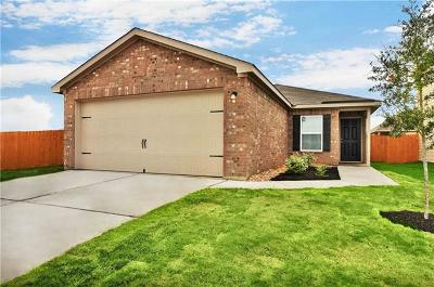 Kyle Single Family Home For Sale: 1342 Breanna Lane