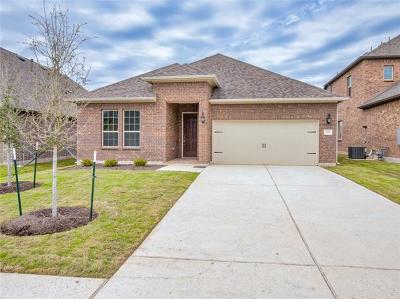 Leander Single Family Home For Sale: 1313 Mustang Brook Ln