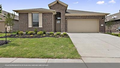 Pflugerville Single Family Home For Sale: 18417 Anicio Gallo Dr