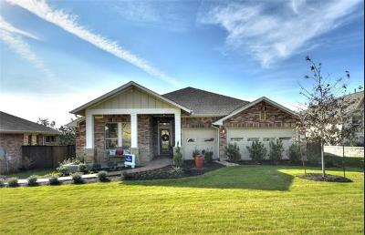 Kyle Single Family Home For Sale: 173 Cypress Forest Dr