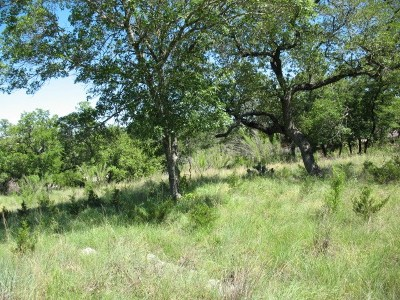 Travis County Residential Lots & Land For Sale: 16106 Clara Van St