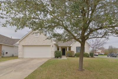 Kyle Single Family Home For Sale: 161 Coneflower Dr