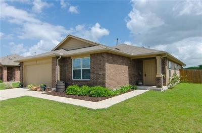 Hutto Single Family Home For Sale: 507 Luna Vista Dr