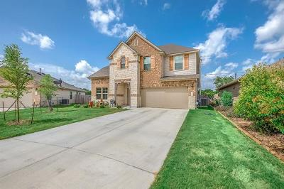 Kyle Single Family Home For Sale: 230 Silver Maple Dr