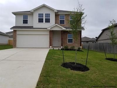 Kyle Single Family Home For Sale: 125 Hollis Cv