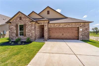 Kyle Single Family Home For Sale: 176 Johnny Cake Dr