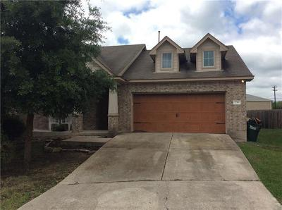 Hays County Single Family Home For Sale: 236 Caddis Cv
