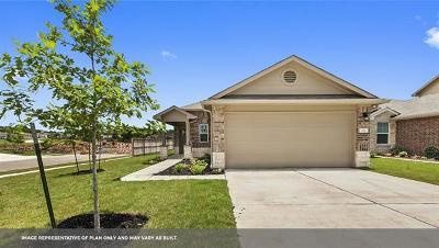 Leander Single Family Home For Sale: 205 Blue Sage Dr