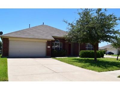 Pflugerville Single Family Home For Sale: 601 Abbeyglen Castle Dr