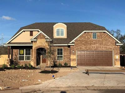 Dripping Springs Single Family Home For Sale: 415 Quartz Dr